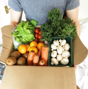 Veganuary Shopping Guide